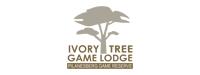 Ivory Tree